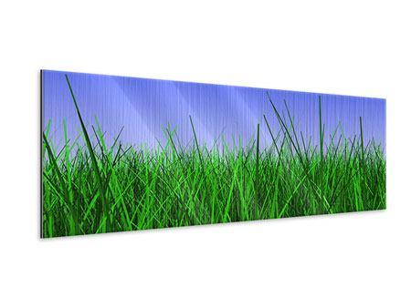 Metallic-Bild Panorama Im Gras