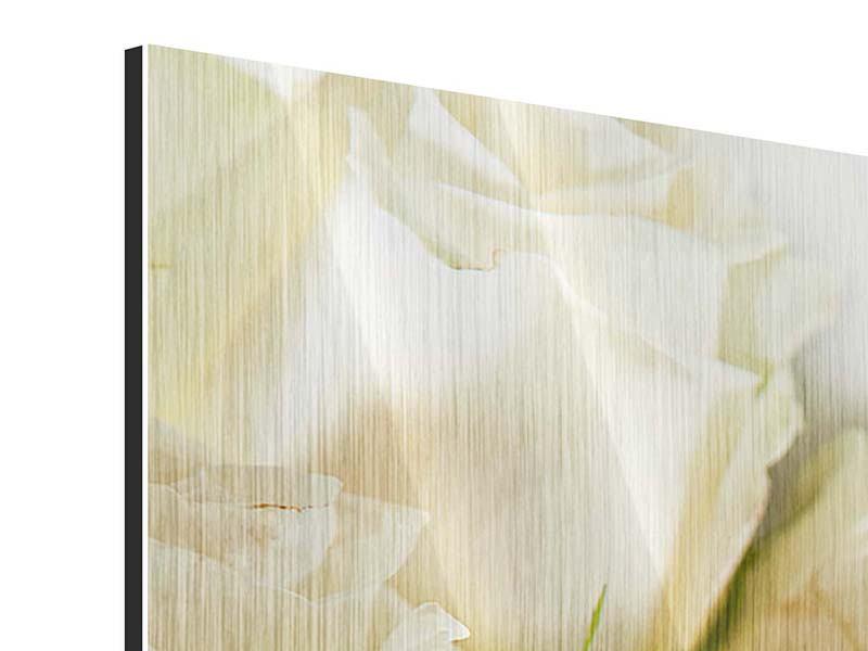 Metallic-Bild Panorama Weisse Rosen