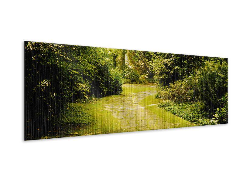 Metallic-Bild Panorama Der bemooste Weg