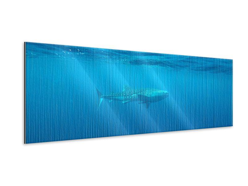 Metallic-Bild Panorama Der Walhai
