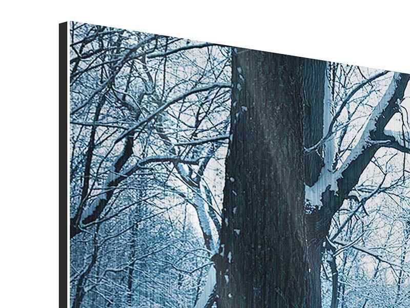 Metallic-Bild Panorama Der Wald ohne Spuren im Schnee