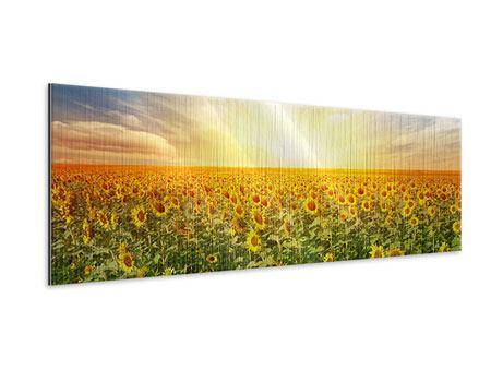 Metallic-Bild Panorama Ein Feld voller Sonnenblumen