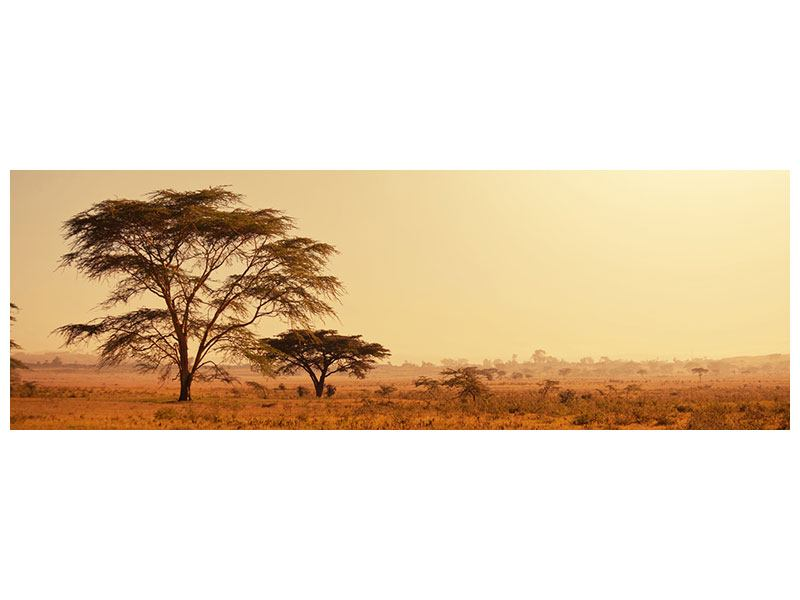 Metallic-Bild Panorama Weideland in Kenia