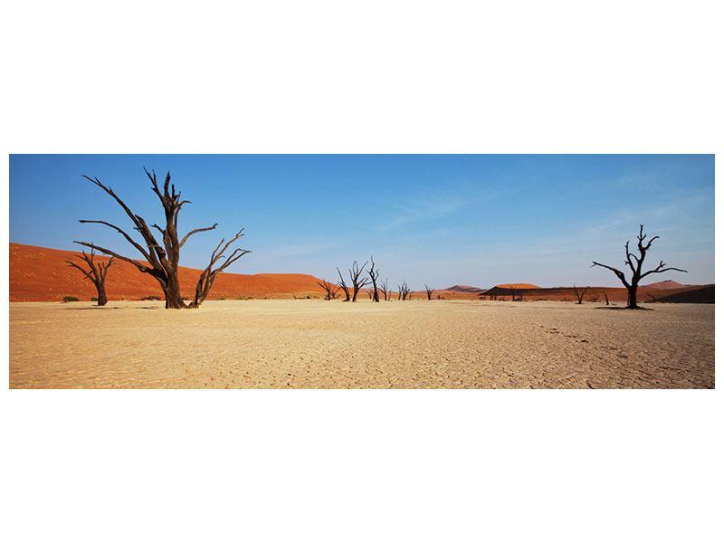 Metallic-Bild Panorama Wüste