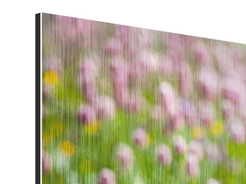 Metallic-Bild Panorama Der Wiesenklee