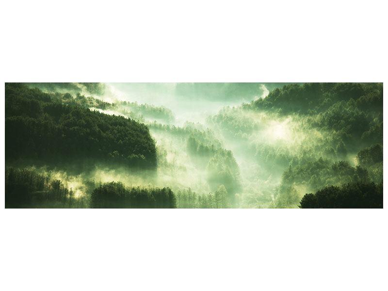 Metallic-Bild Panorama Über den Wäldern