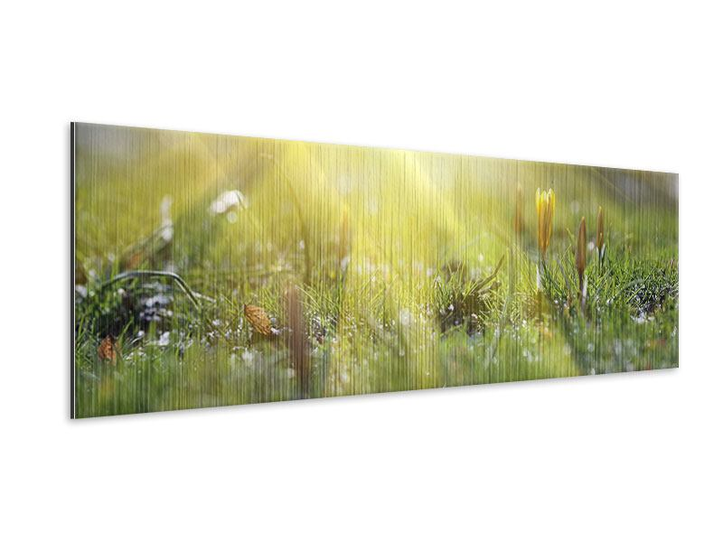 Metallic-Bild Panorama Blumige Wiese