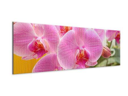 Metallic-Bild Panorama Königliche Orchideen