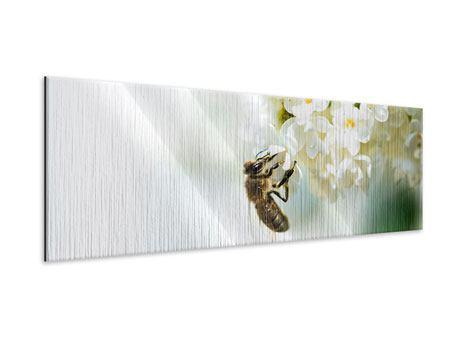 Metallic-Bild Panorama Die Hummel und die Blüte