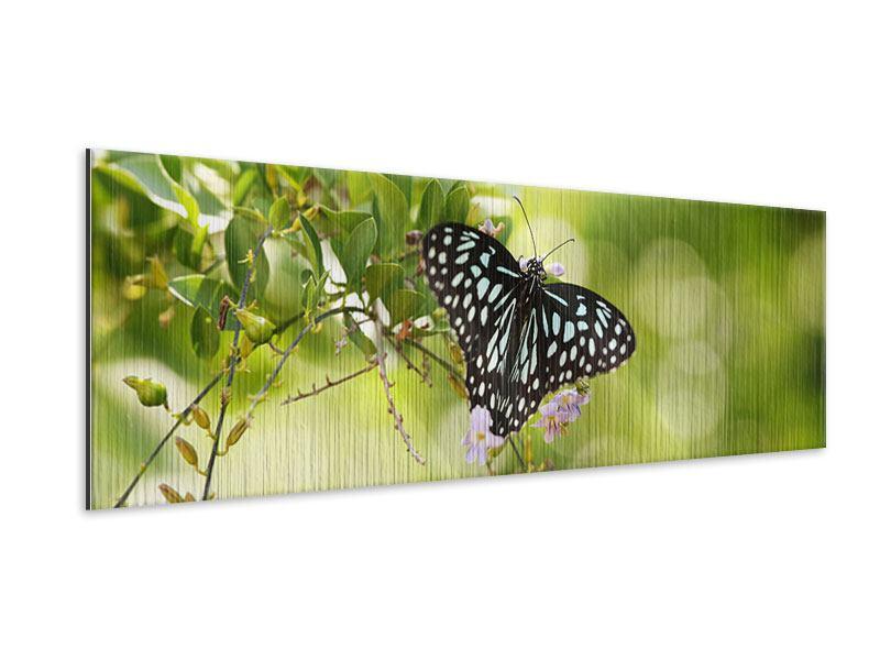 Metallic-Bild Panorama Papilio Schmetterling XXL
