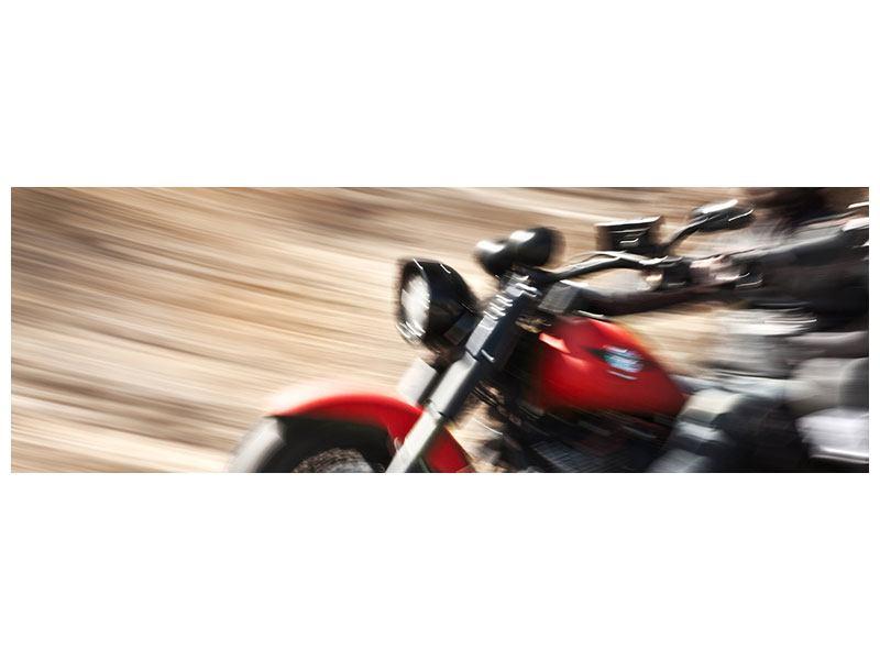 Metallic-Bild Panorama Biker