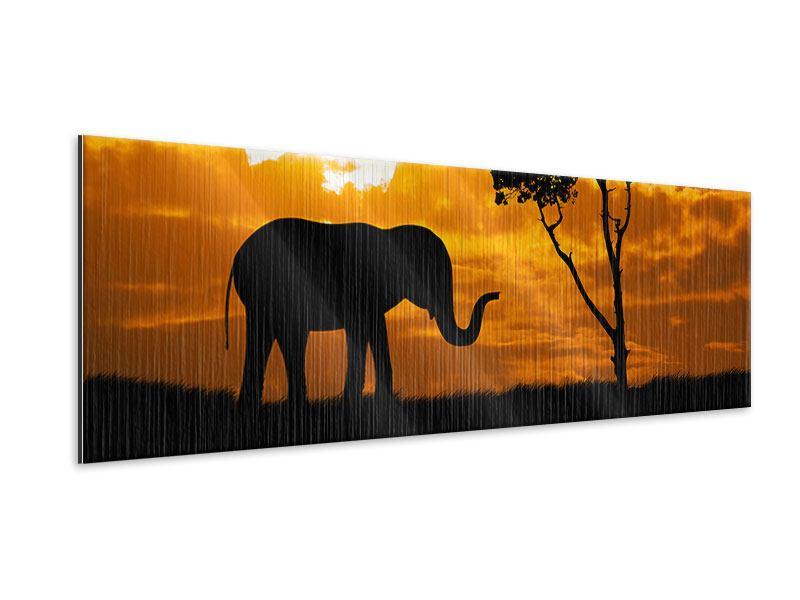Metallic-Bild Panorama Verträumtes Afrika