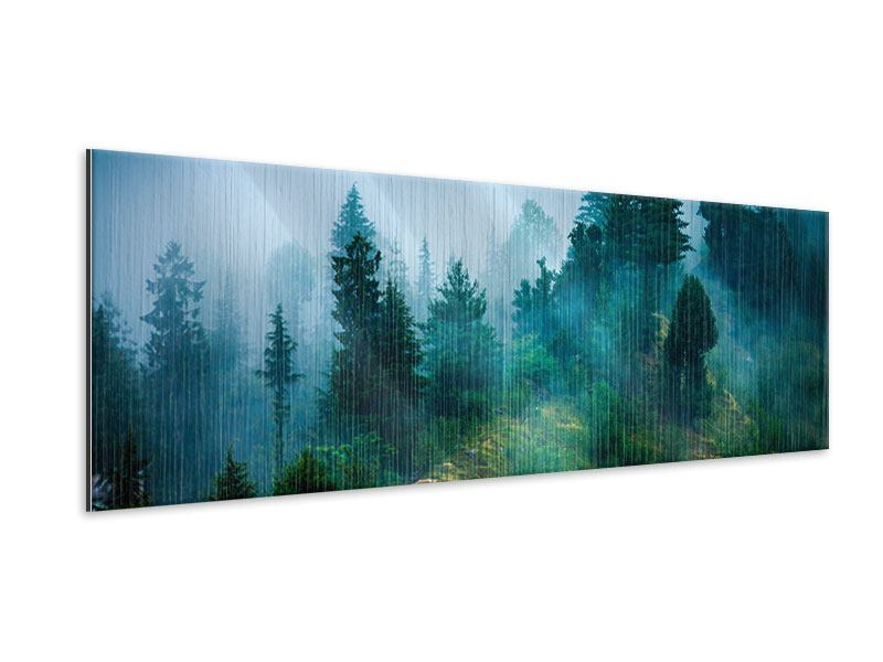 Metallic-Bild Panorama Geheimnisvoller Wald