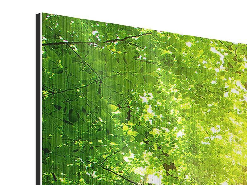 Metallic-Bild Panorama Baum