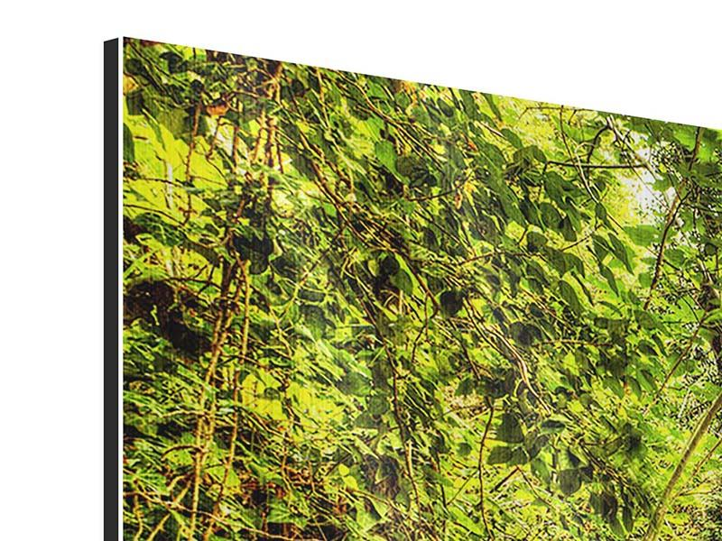 Metallic-Bild Panorama Wasserfall im Wald