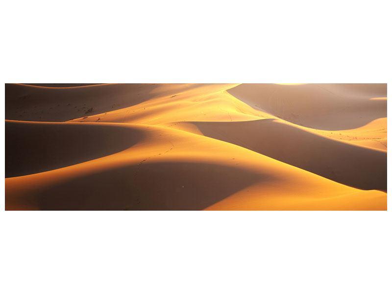 Metallic-Bild Panorama Wüstenwanderung
