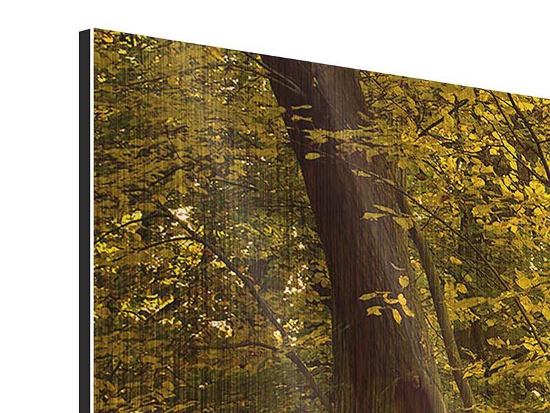 Metallic-Bild Panorama Herbstlaub
