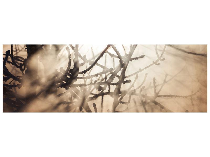 Metallic-Bild Panorama Äste im Schleierlicht