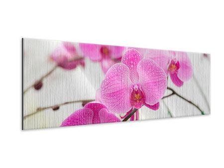 Metallic-Bild Panorama Das Symbol der Orchidee