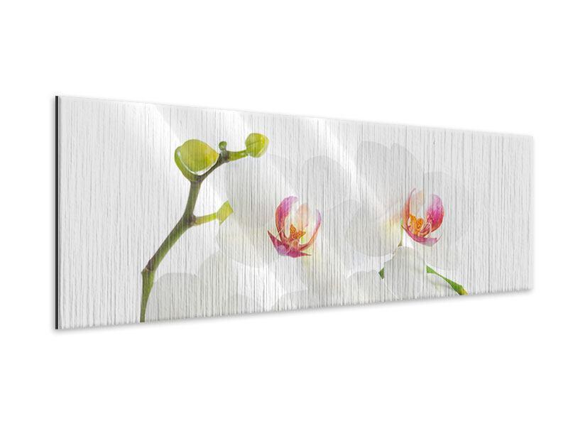 Metallic-Bild Panorama Orchideenliebe