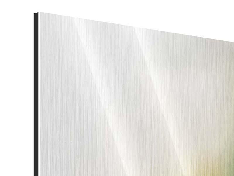 Metallic-Bild Panorama Tulpenperspektive