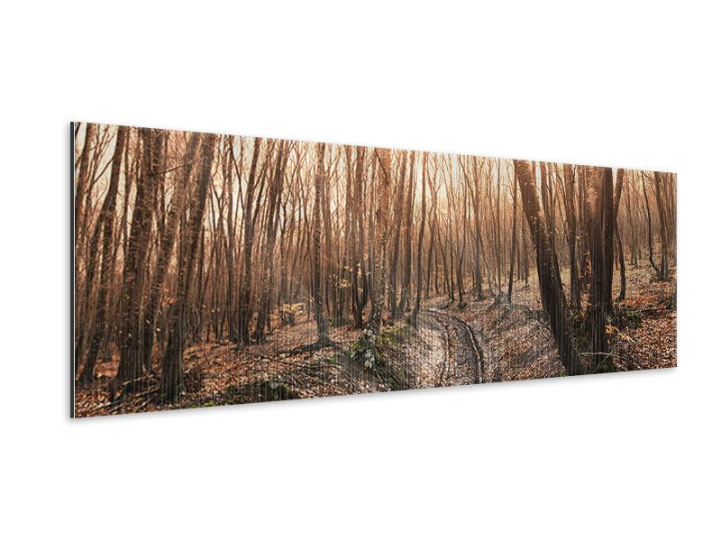 Metallic-Bild Panorama Der kahle Wald