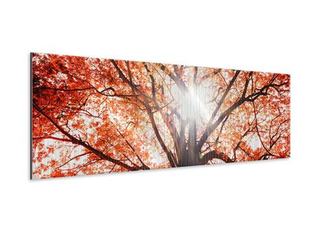 Metallic-Bild Panorama Herbstlicht