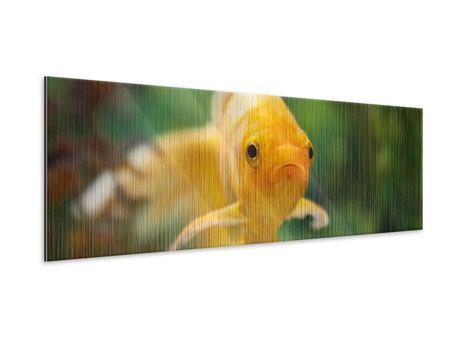 Metallic-Bild Panorama Der Fisch