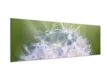Metallic-Bild Panorama Pusteblume XL im Morgentau