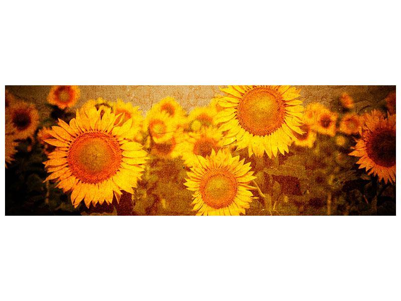 Metallic-Bild Panorama Retro-Sonnenblumen