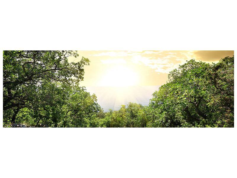 Metallic-Bild Panorama Am Ende des Waldes