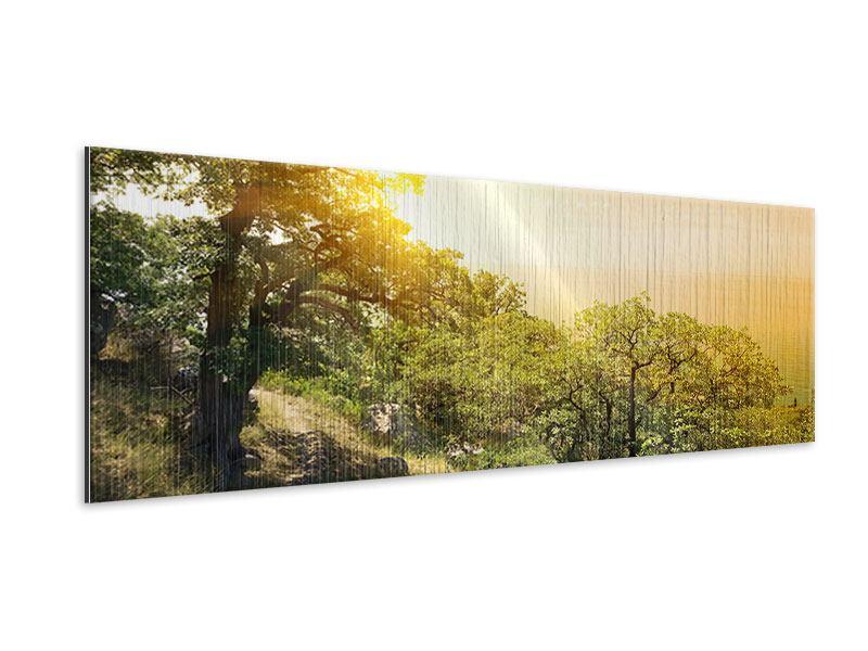 Metallic-Bild Panorama Sonnenuntergang in der Natur