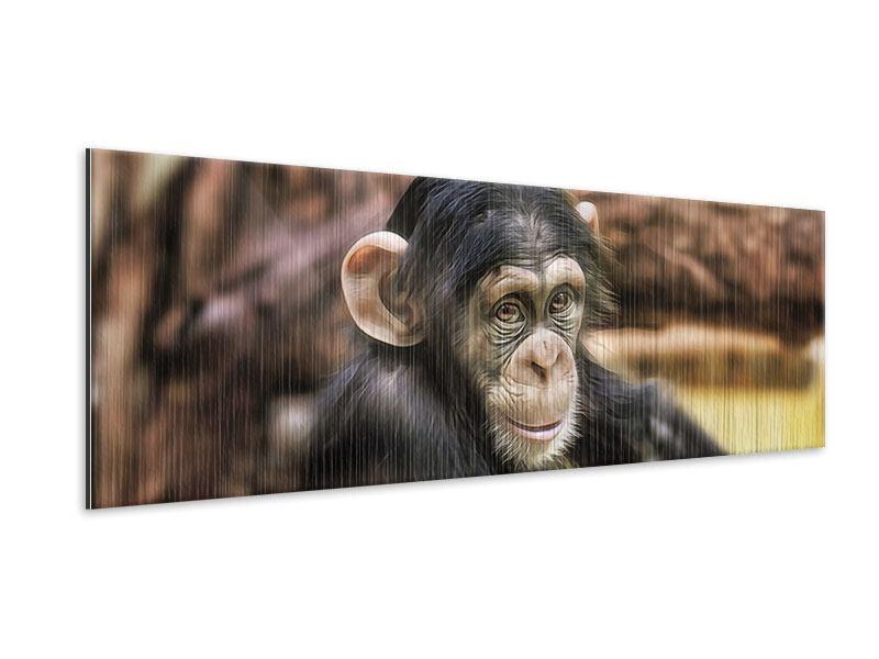 Metallic-Bild Panorama Der Schimpanse