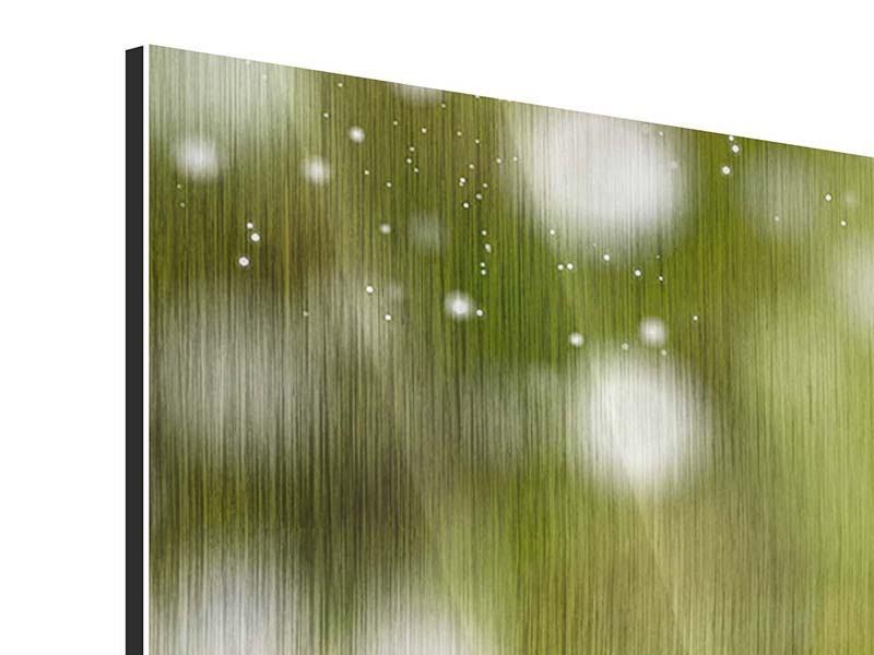 Metallic-Bild Panorama Lilien-Lichtspiel