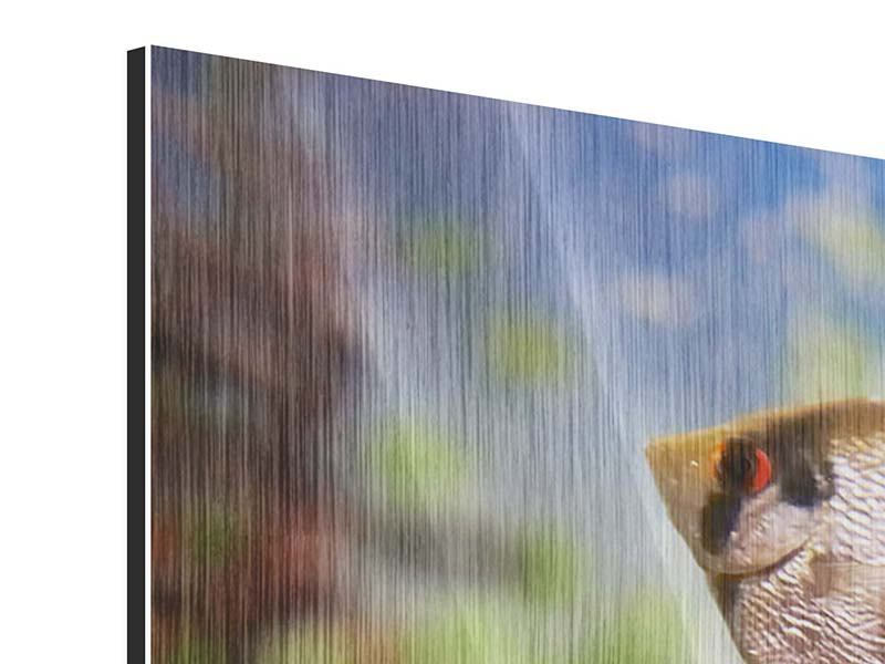 Metallic-Bild Panorama Bunte Fische