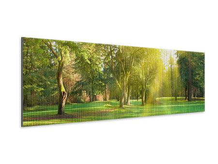 Metallic-Bild Panorama Im Park