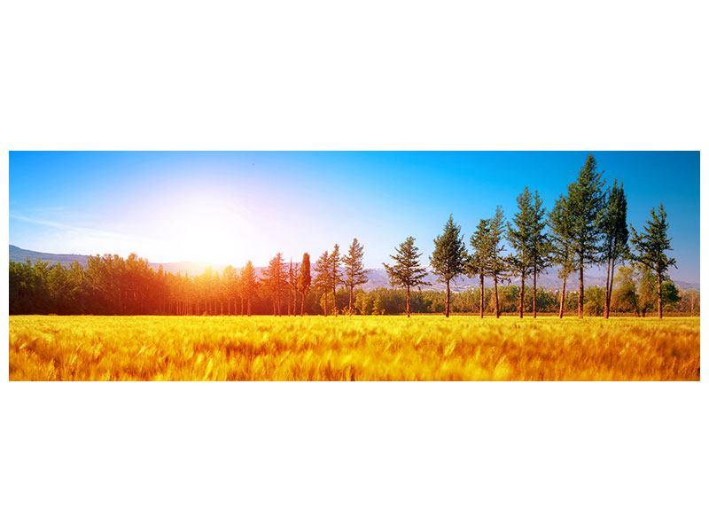 Metallic-Bild Panorama Der Herbst
