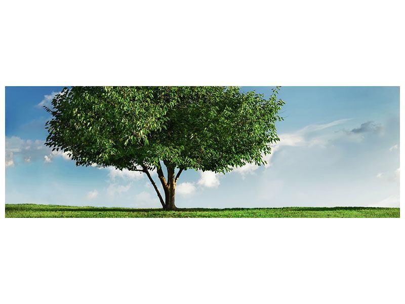 Metallic-Bild Panorama Baum im Grün