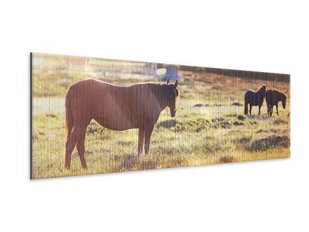Metallic-Bild Panorama Wilde Pferde