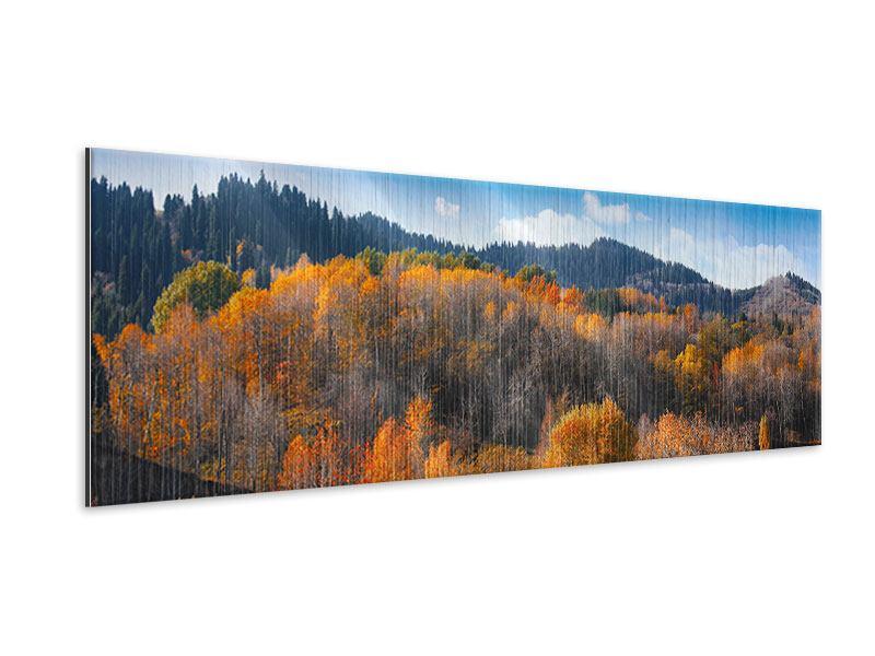 Metallic-Bild Panorama Wolken ziehen auf