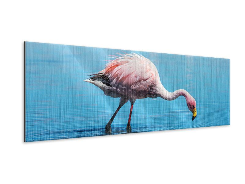 Metallic-Bild Panorama Der Flamingo