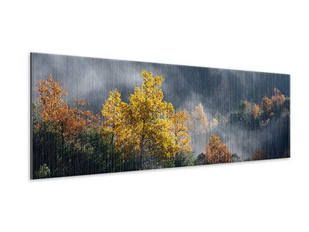 Metallic-Bild Panorama Mondscheinwald