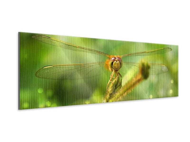 Metallic-Bild Panorama XXL-Libelle