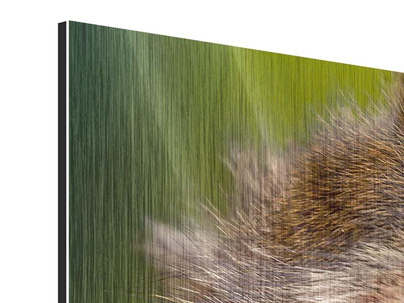 Metallic-Bild Panorama Der Makak