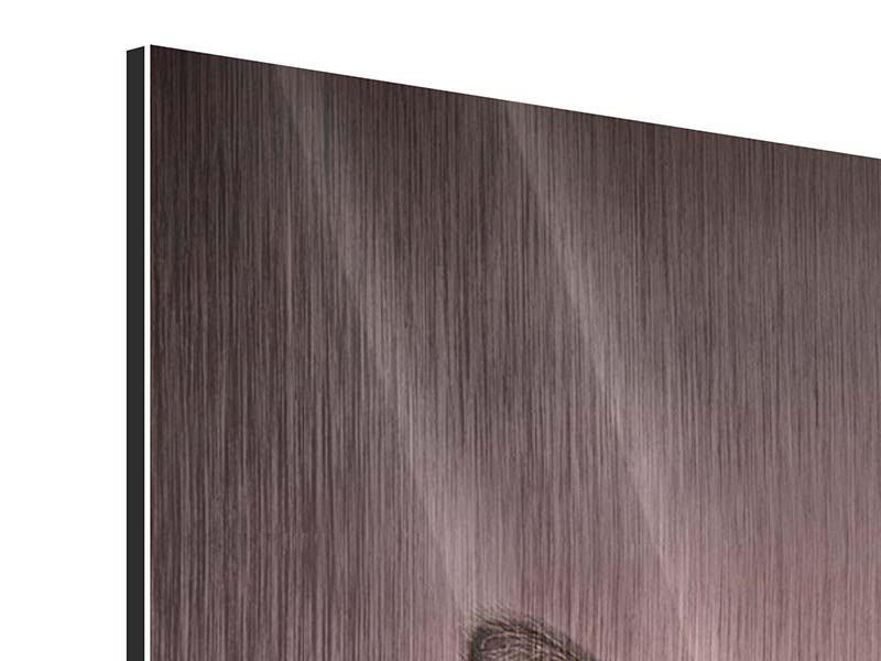Metallic-Bild Panorama Elegante Samtpfoten