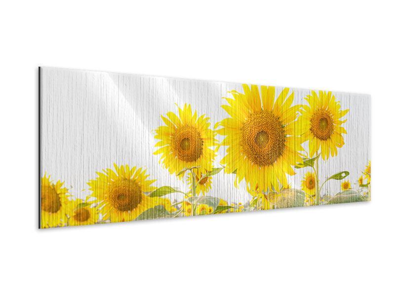 Metallic-Bild Panorama Das Sonnenblumenfeld