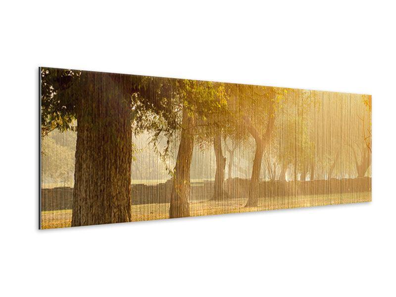 Metallic-Bild Panorama Romantik unter Bäumen