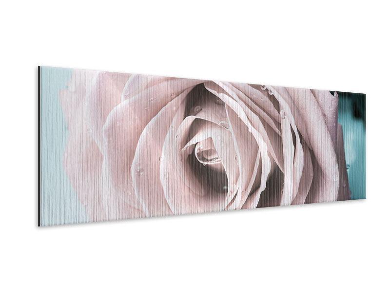 Metallic-Bild Panorama Pastellrose