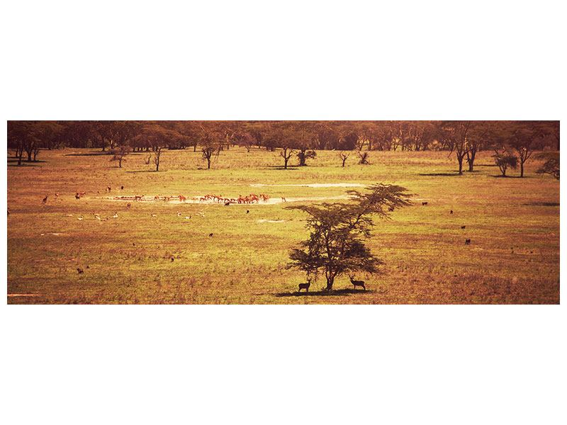 Metallic-Bild Panorama Malerisches Afrika