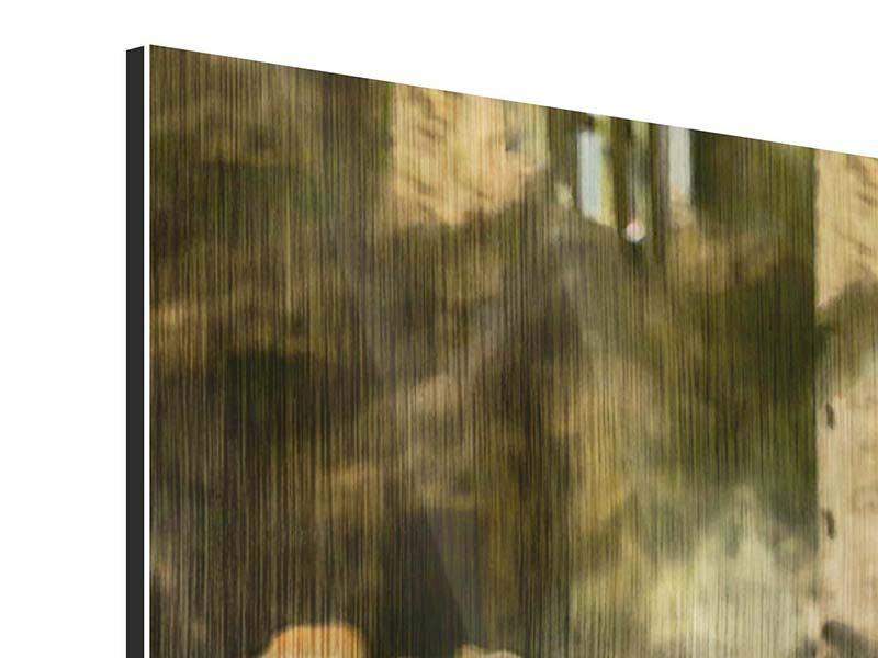 Metallic-Bild Panorama Der Sibirische Tiger